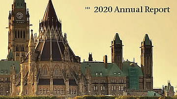 partial cover of the 2020 annual report